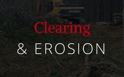 clearing-erosion